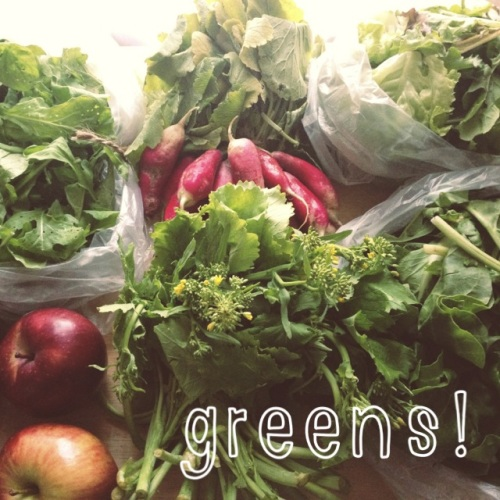 field goods greens!
